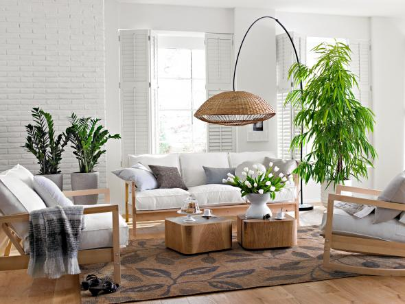 Plante pour chambre humide